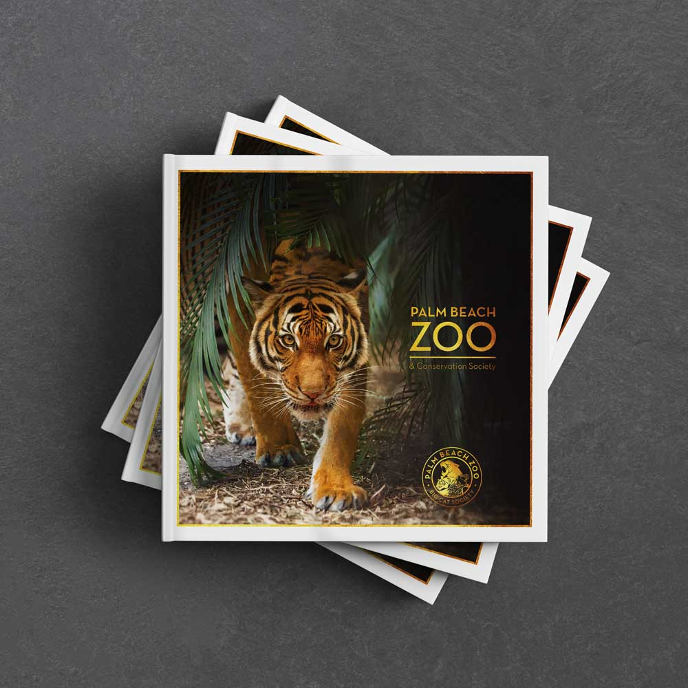 rp agency creative services for palm beach zoo